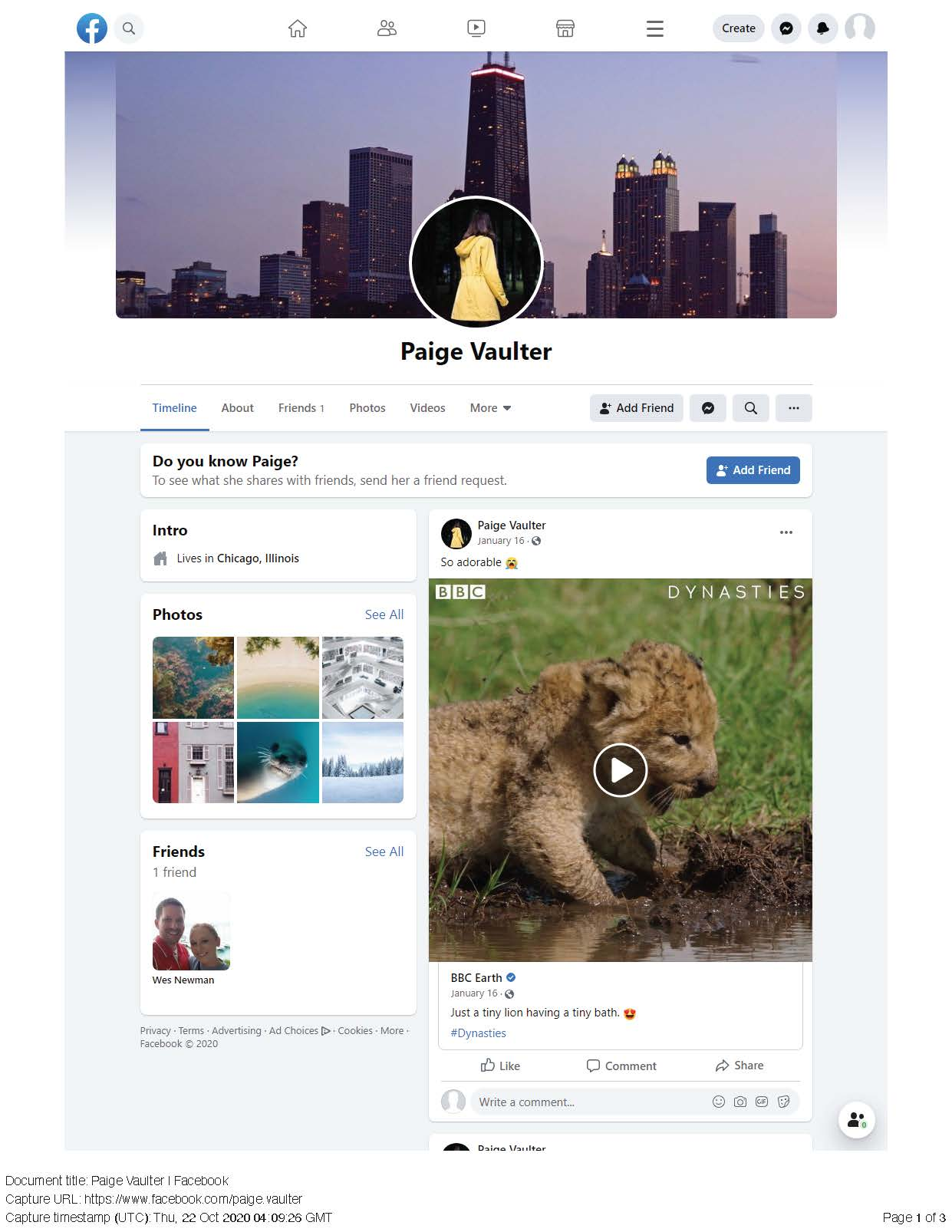 Page Vault Facebook Capture